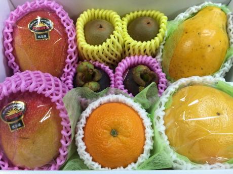 旬な果物の詰め合わせ一例(7)