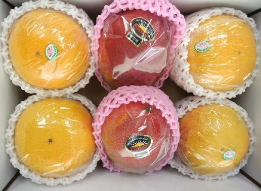 旬な果物の詰め合わせ一例(5)