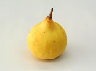 西洋梨の品種(ルレクチェ)