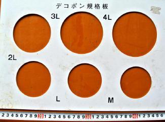 広島産不知火のサイズ規格