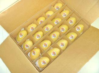 フィリピンマンゴー20個入り箱