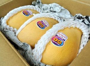 タイマンゴー3個入り箱内