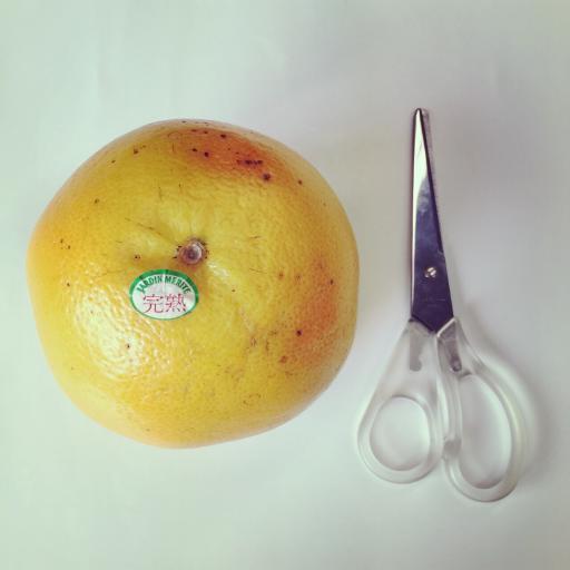 グレープフルーツ × はさみ