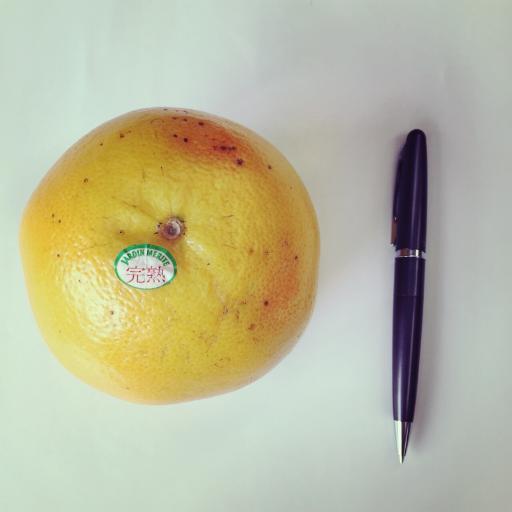 グレープフルーツ × ペン