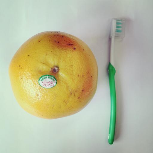 グレープフルーツ × 歯ブラシ