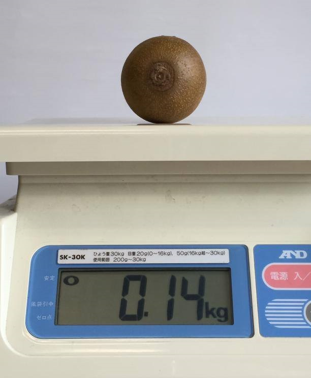 某店舗で販売していたキウイの重量