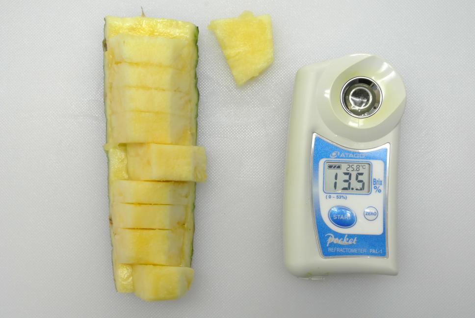 パイナップル糖度13.5