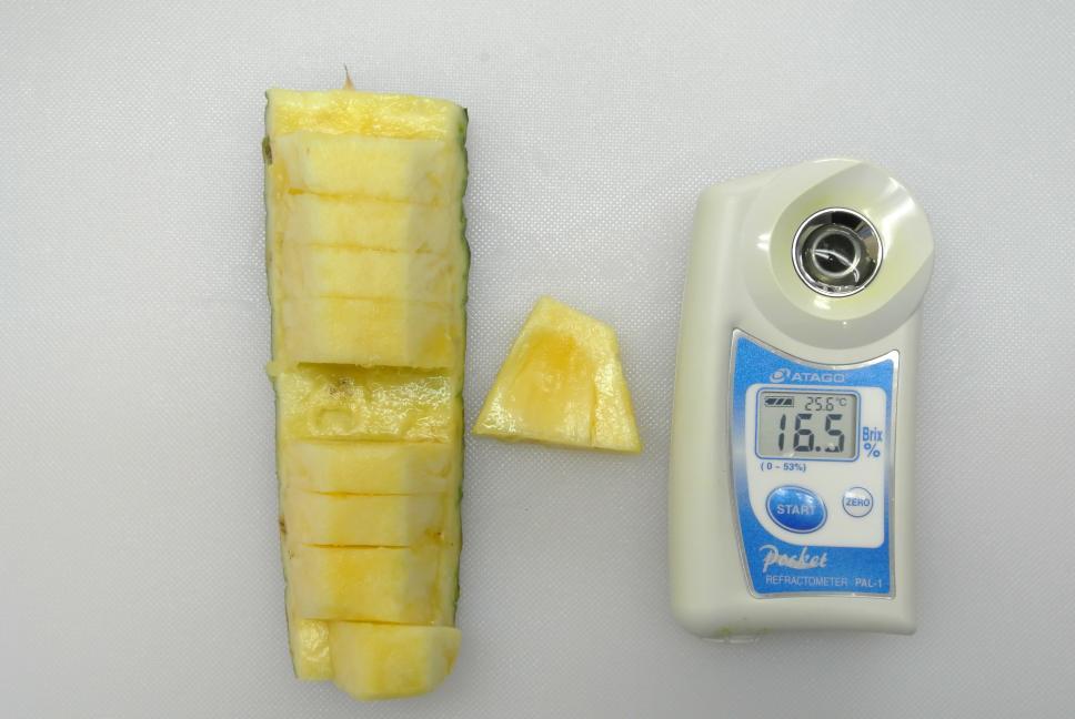 パイナップル糖度16.5