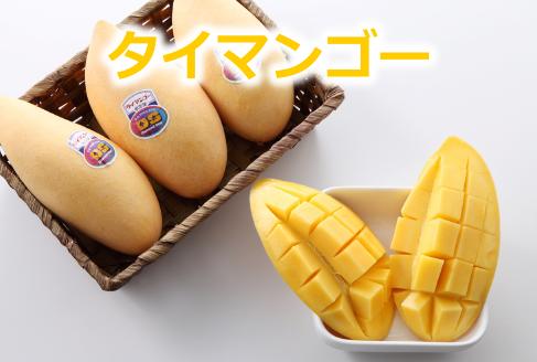 タイマンゴー
