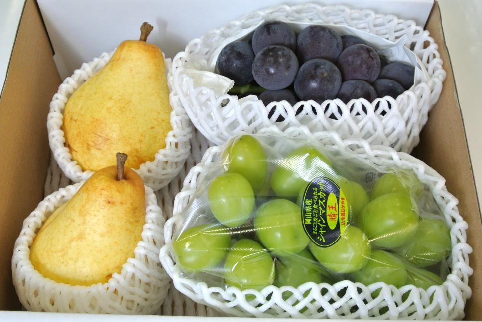 西洋梨(オーロラ)、ぶどう2種セット