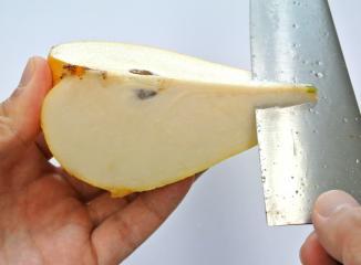 西洋梨の切り方3