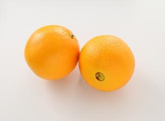 ネーブルオレンジの品種(ワシントンネーブル)