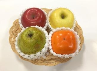 秋果実 4色の彩り