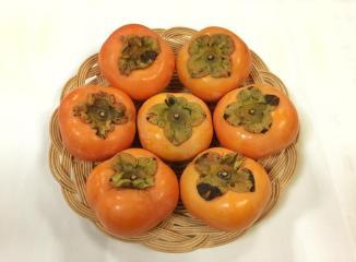 浜北次郎柿