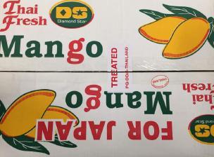 タイマンゴー12個入り箱