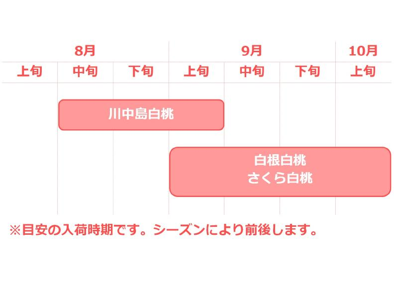 輝々桃入荷カレンダー