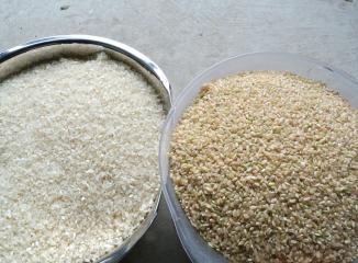 群馬産米の精白米と玄米