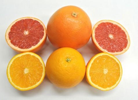 ジュース用 柑橘セット