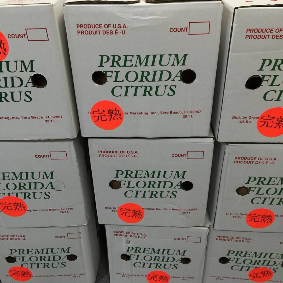 フロリダ産グレープフルーツ箱