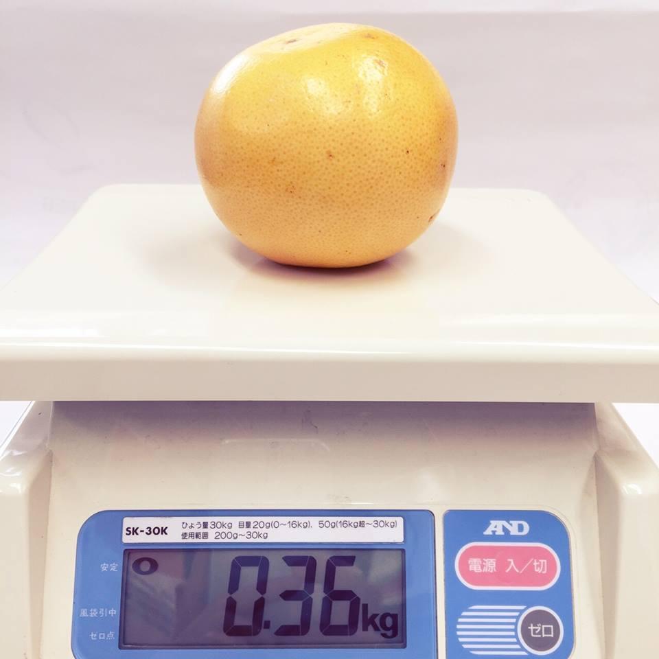 市販グレープフルーツ重量
