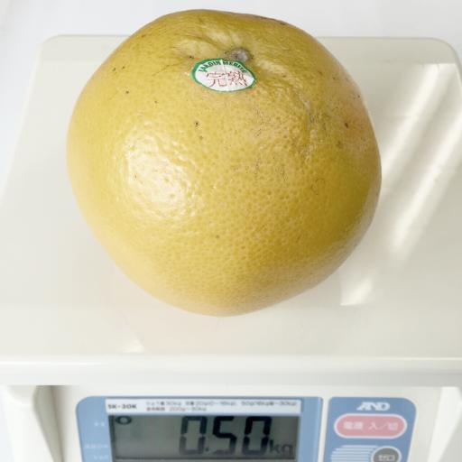 グレープフルーツの重さ