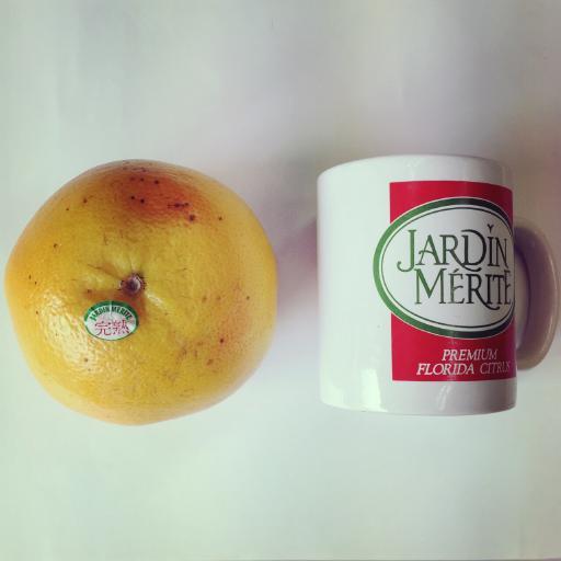 グレープフルーツ × マグカップ