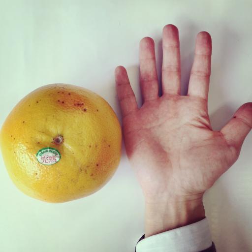 グレープフルーツ × 手