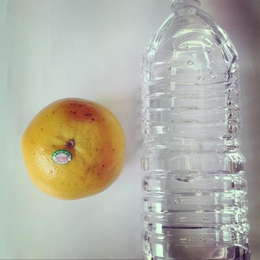 グレープフルーツ × 2リットルペットボトル