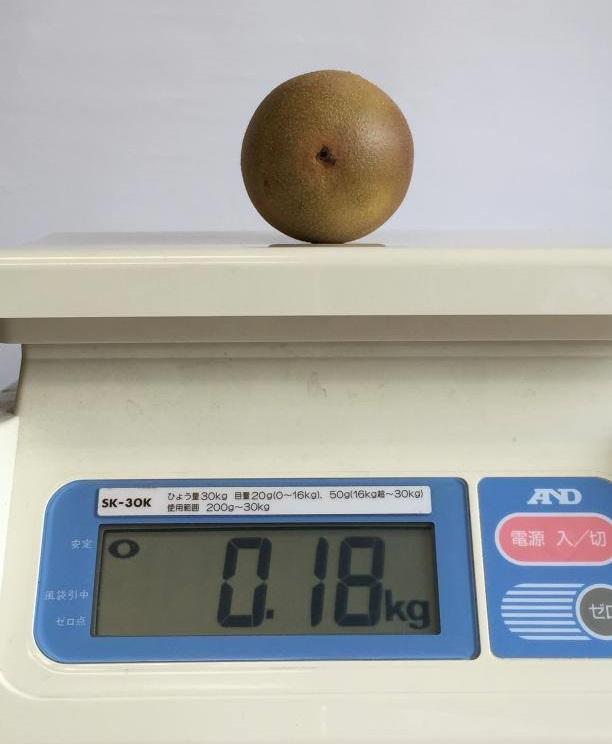 弊社キウイの重量