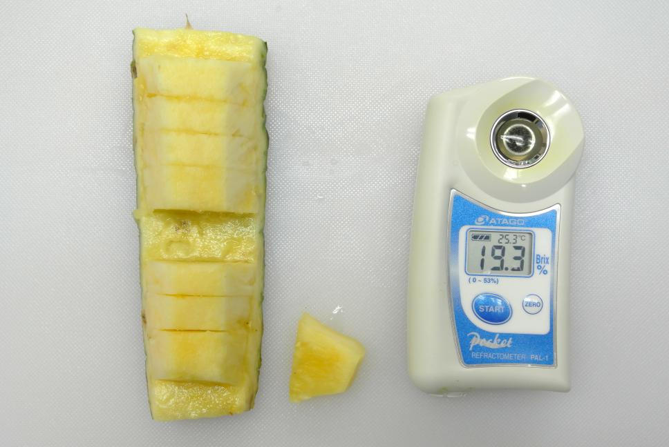 パイナップル糖度19.3