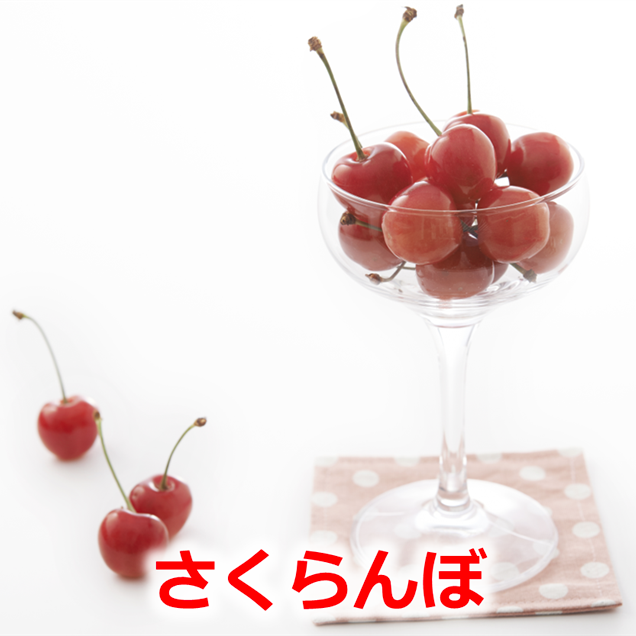 さくらんぼ(佐藤錦)