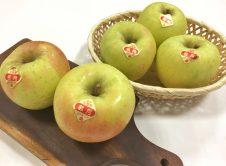 りんご(ぐんま名月)