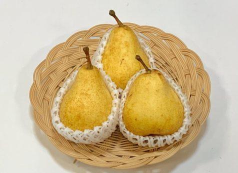 西洋梨(オーロラ) 旬の産地