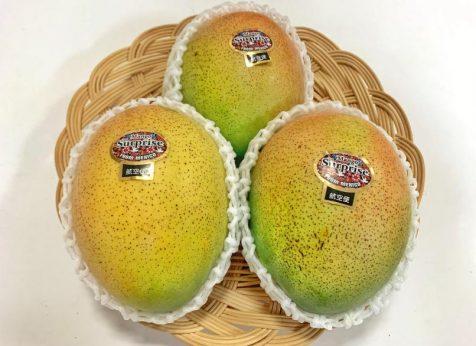 キーツマンゴー  メキシコ産