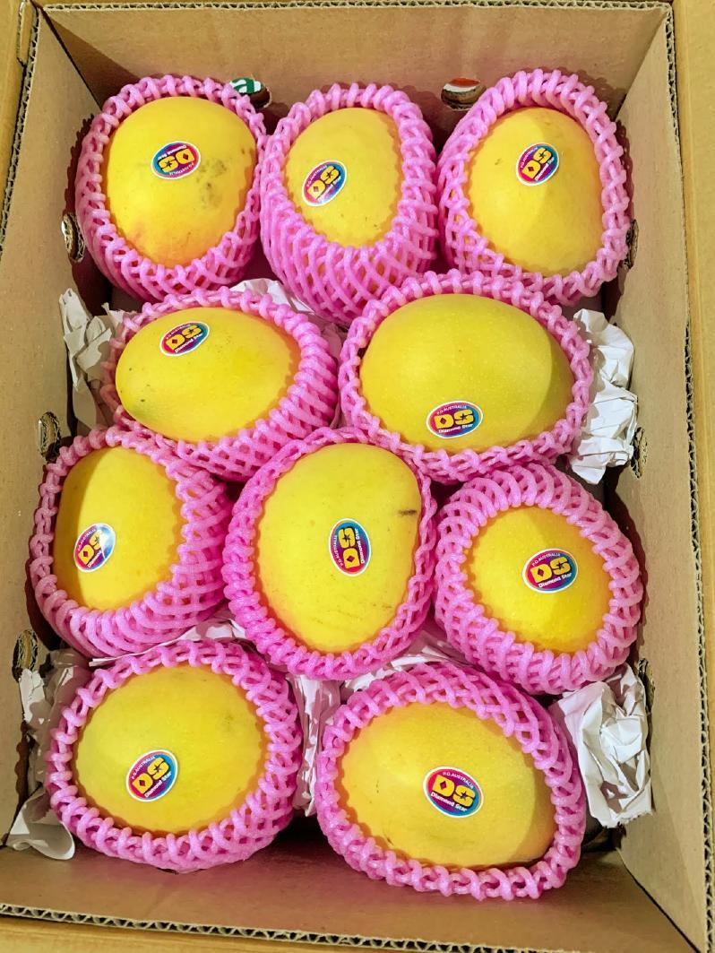 ピーチマンゴー10玉サイズ