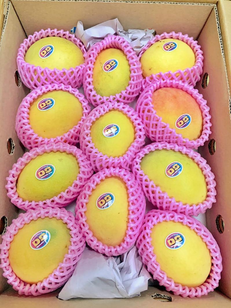 ピーチマンゴー11玉サイズ