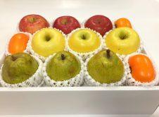 秋果実の彩り