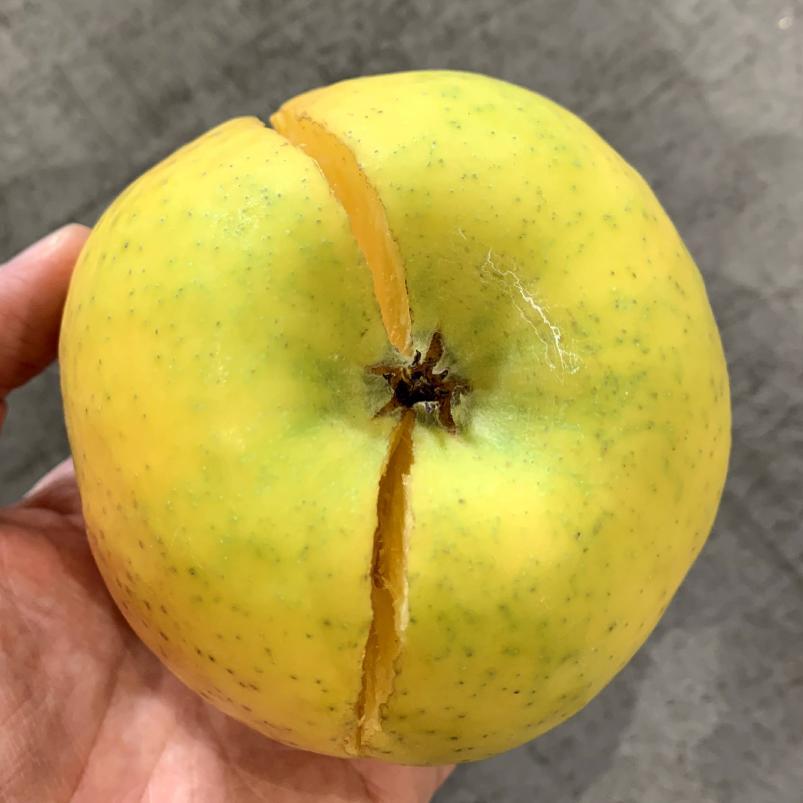 ツル割れりんご