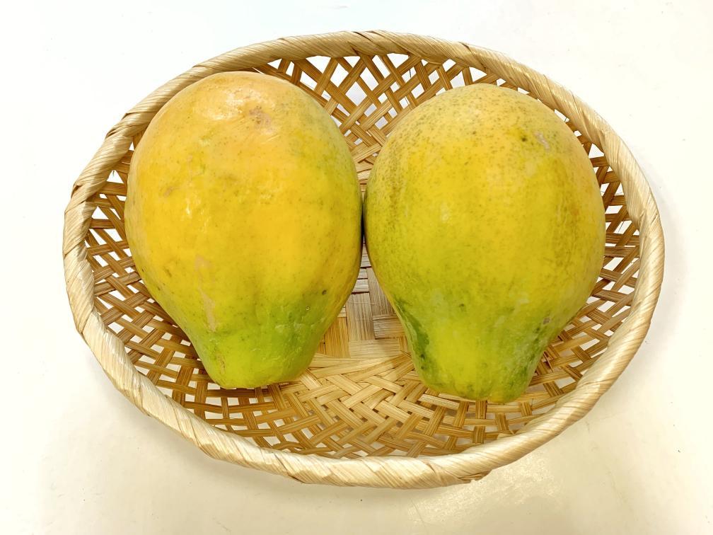 ハワイ産パパイヤ カポホソロ種 カゴ入り